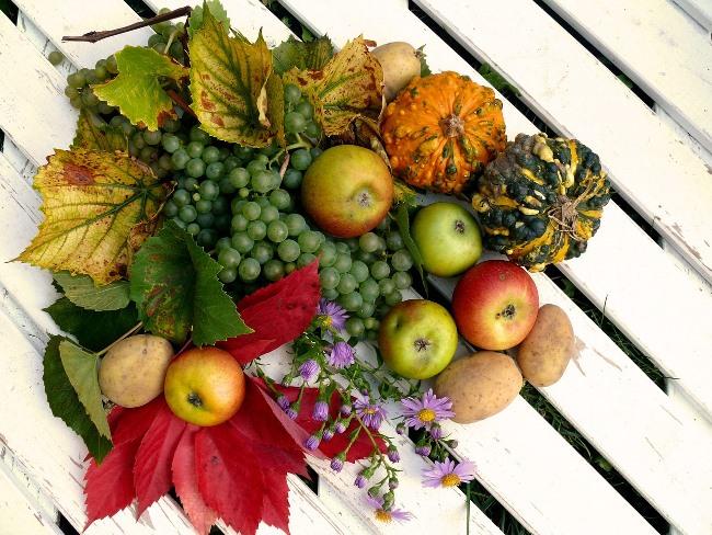 Podzimní detox