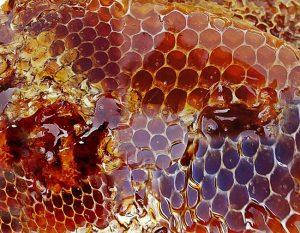 Med, medová masáž
