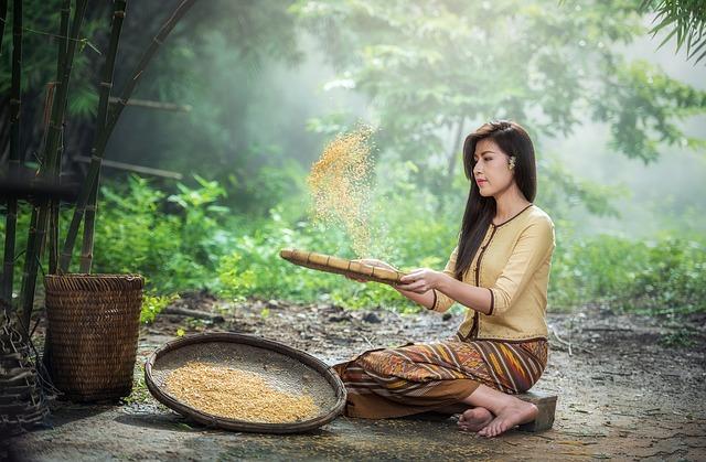 Rýže, rýžová dieta