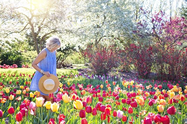 Jarní omlazení, květiny