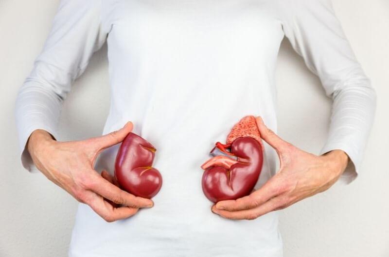 Vysoký příjem bílkovin může poškodit klouby a ledviny.