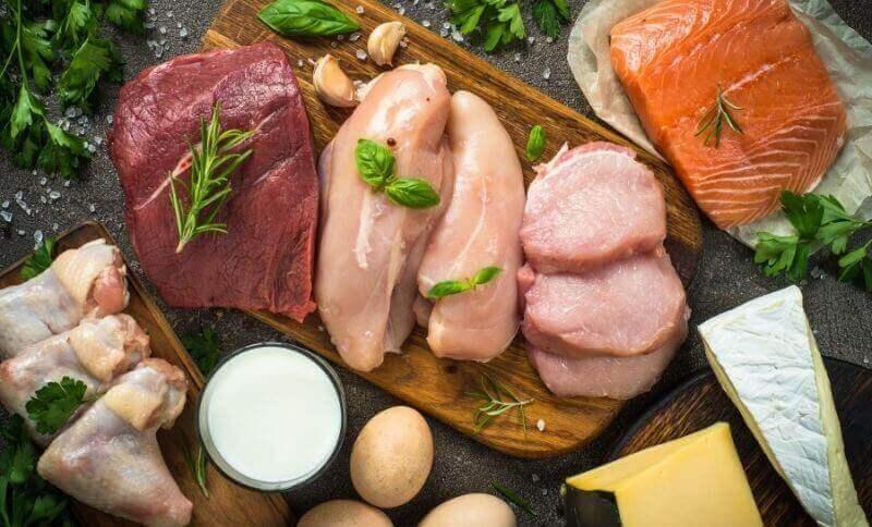 Živočišní bílkoviny obsahují esenciální aminokyseliny, které si tělo nedokáže vytvořit samo.