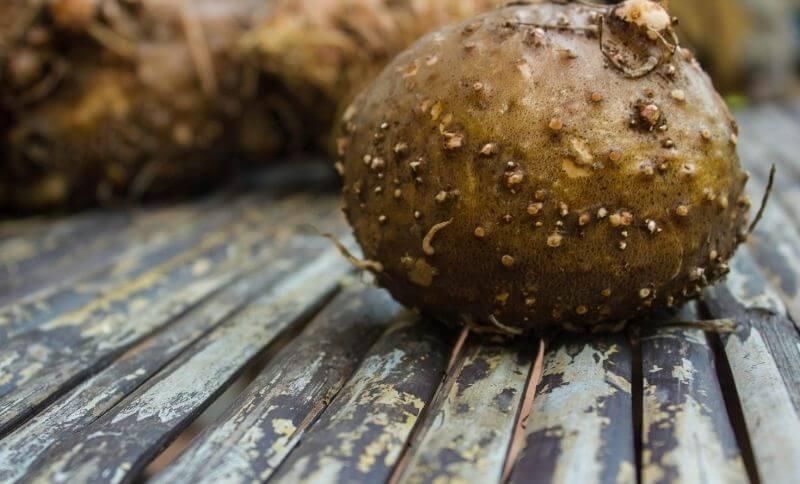 Proces výroby konjakových těstovin začíná očistěním a osušením hlíznaté části.