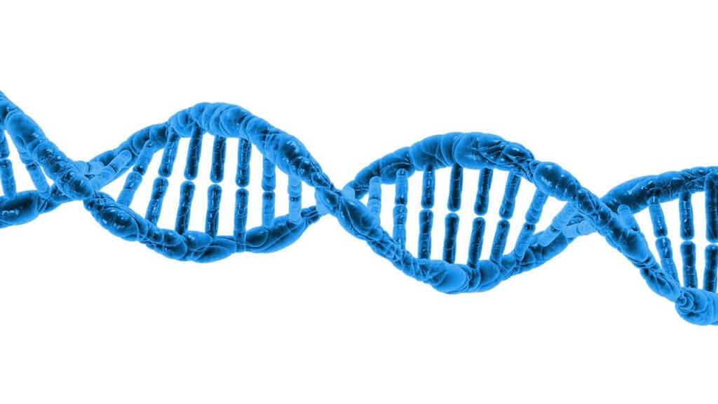 Struktura kolagenu má tvar pravotočivé závitnice