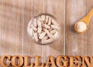 Vše o kolagenu v jednom článku.