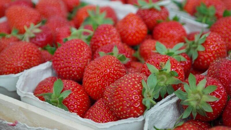 Jahody patří mezi ovoce s nejnižším obsahem sacharidů.