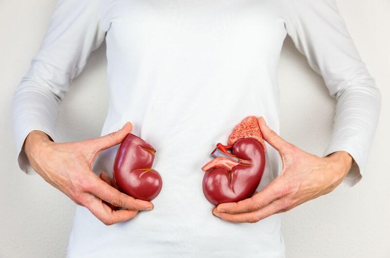Proteinová dieta není vhodná pro každého