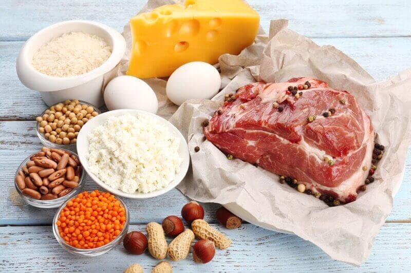 Bílkoviny a atkinsonova dieta
